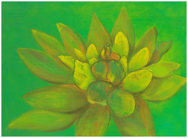 debra linker, painting, acrylic, flora, flower, lotus,