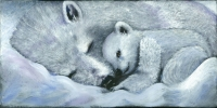 zz-Snow Baby Grey